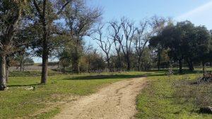 parque tamarguillo