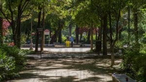 Parque María Luisa