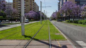 Vías del Tranvía en San Bernardo