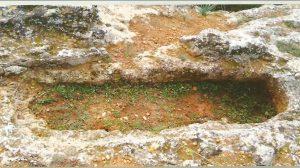 Descubrimiento arqueológico /D&M