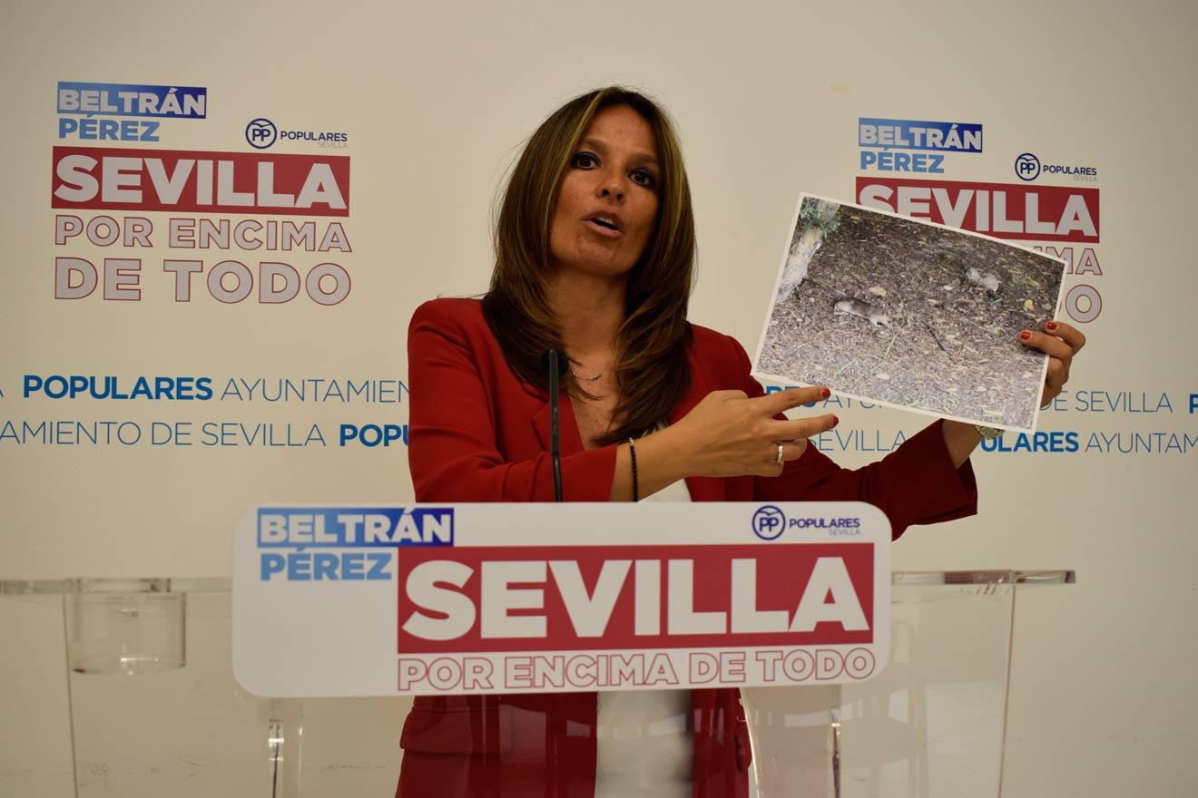 Evelia Rincón /PP