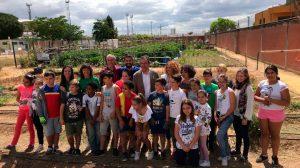 Programa de Huertos Urbanos /Ayto. Sevilla