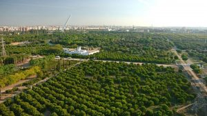 Parque del Alamillo /Junta de Andalucía