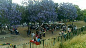 Parque de Su Eminencia /Ayto. Sevilla