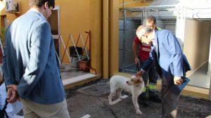 Zoosanitario municipal /Ayto. Sevilla