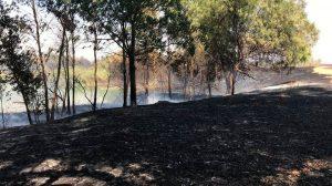 Incendio en el Parque del Tamarguillo/@EmergenciasSev